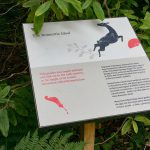 Interpretative Graphic Panel Telling the Garden Story at Brodick