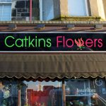 Catkins Flowers Fascia Signage