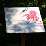 Printed Interpretation Panel in Steel Frame